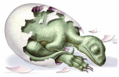 Потомство динозавров и забота о нем