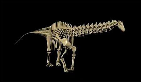 Жители маленького австралийского городка собственными усилиями возвели палеонтологический музей для найденного здесь динозавра
