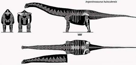 Гигантский доисторический ящер - Аргентинозавр