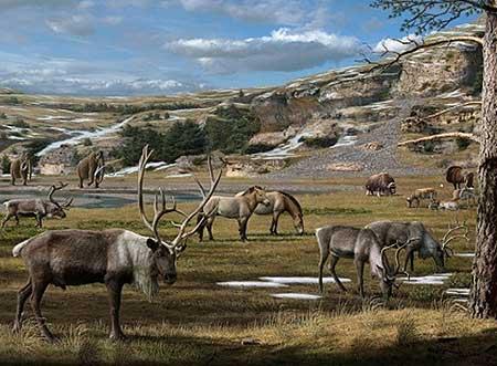 Животные ледникового периода: травоядные