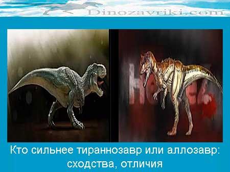 Тираннозавр против аллозавра: кто сильнее, сходства, отличия
