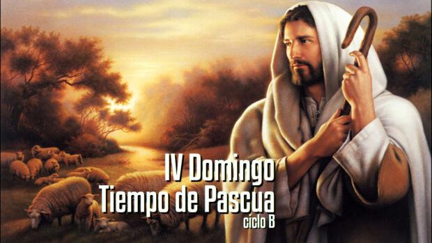 IV Domingo de Pascua B