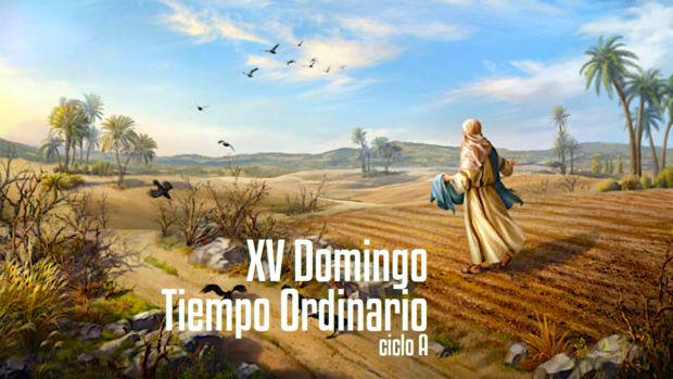 XV Domingo del Tiempo Ordinario (A)
