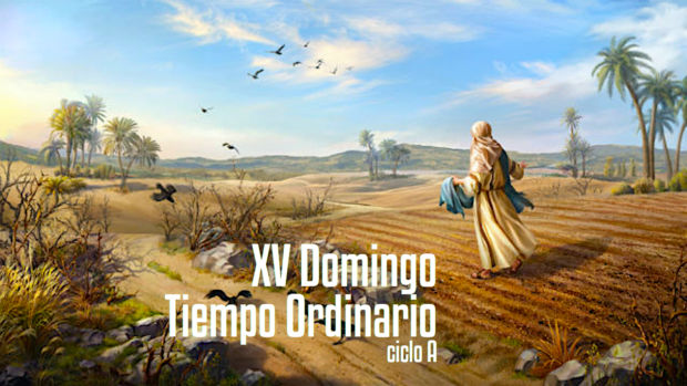 XV Domingo del Tiempo Ordinario A