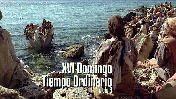 XVI Domingo del Tiempo Ordinario B