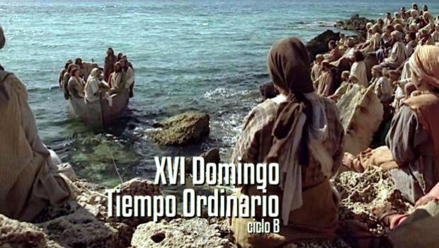 XVI Domingo del Tiempo Ordinario