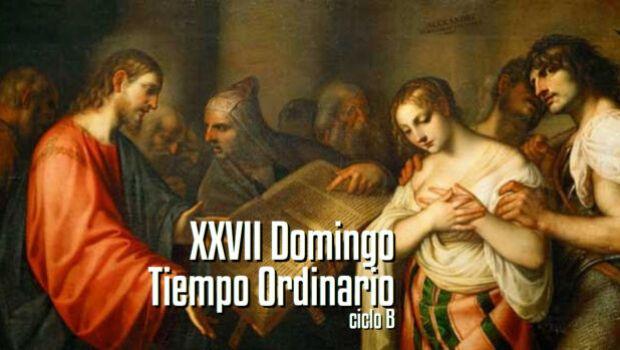 XXVII Domingo del Tiempo Ordinario
