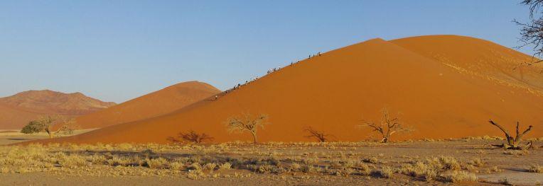 dune-45-sossusflay-namibia