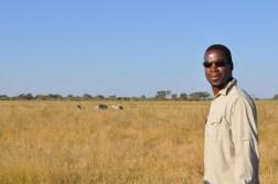 okavango-delta-zimbabwe-417