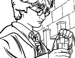 Dibujos Harry Potter Para Colorear On Log Wall