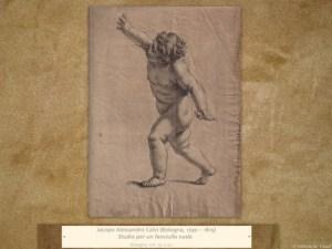 Bozzetti, Disegni, Monocromi, Studi
