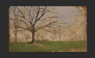 Alfredo Tartarini - Studio di albero, olio su carta, cm. 27 x 21