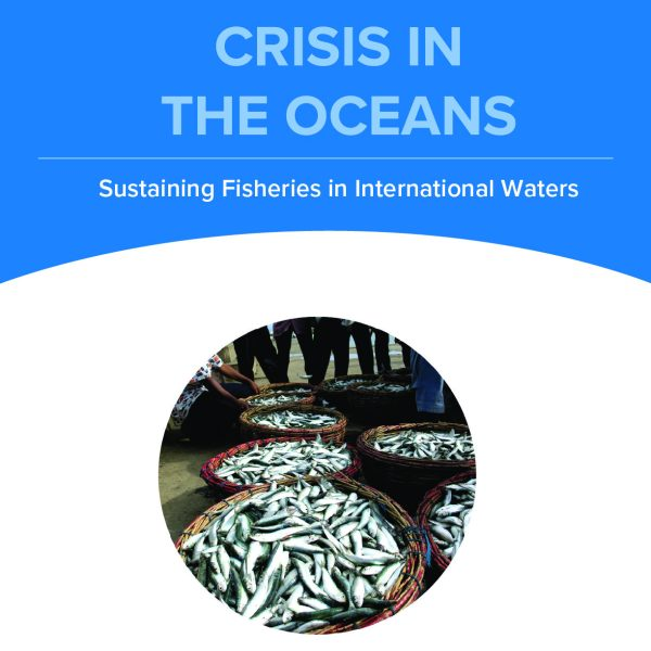 Crisis in the Oceans, Simulation, Diplomacy Center