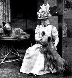 Skye Terrier love