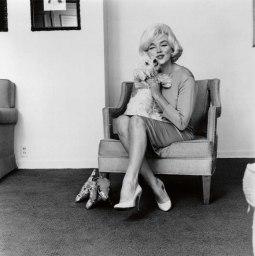 Marilyn Monroe with Mafia, her Maltese