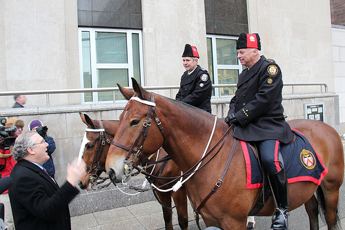 POD_inauguration horses