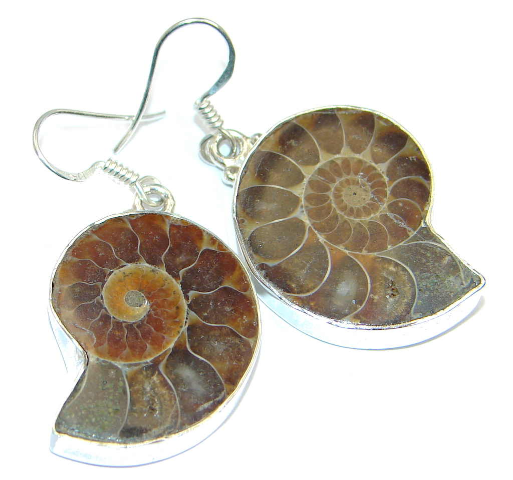 Fashion Shell Ammonite Fossil Sterling Silver earrings