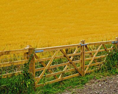 Rural & Estate Fencing