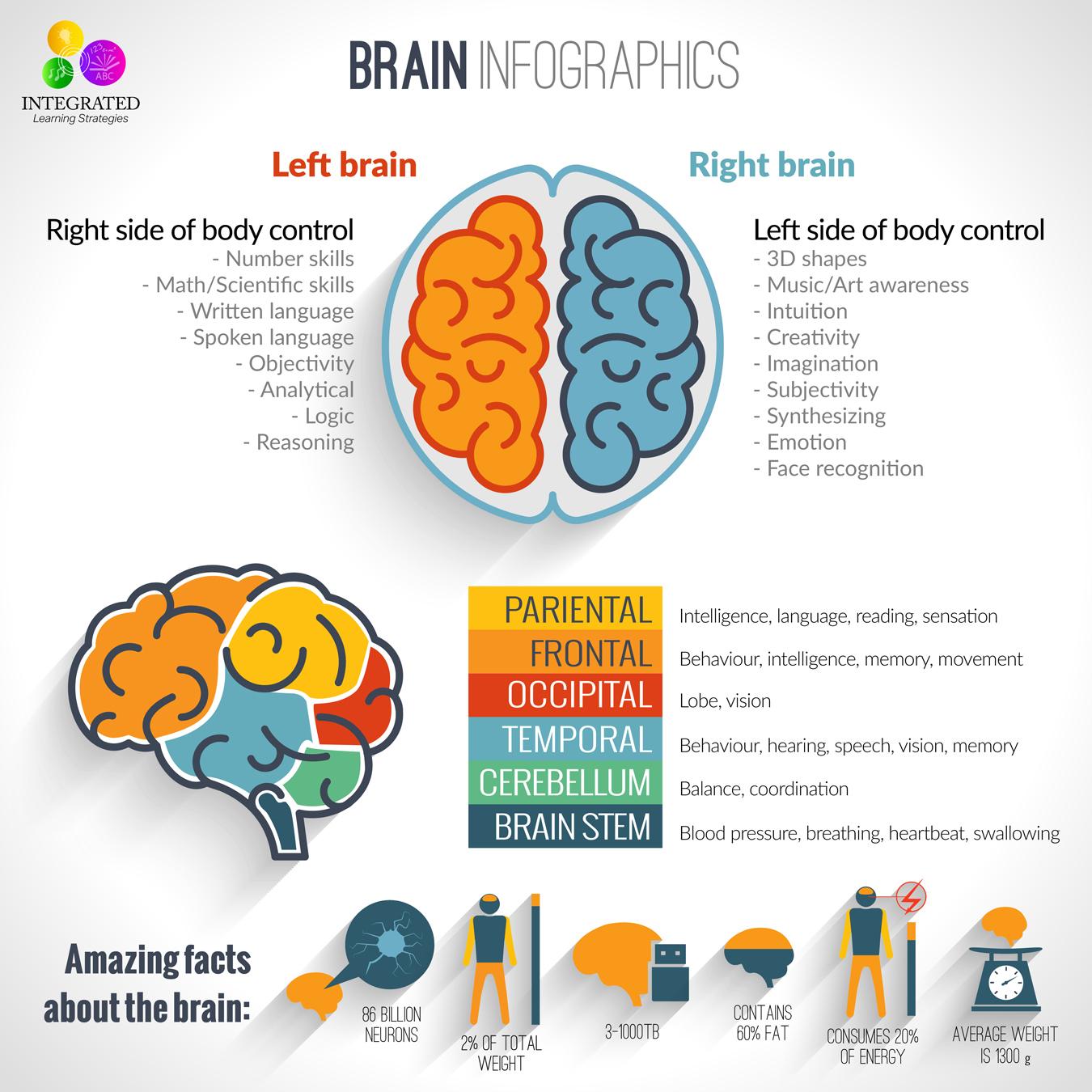 Brain Amp Resources
