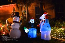 COUSIN'S DECKED OUT FRONT YARD