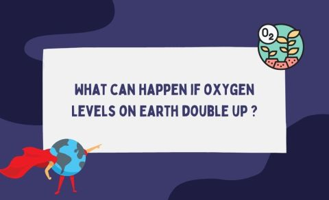 What-can-happen-if-oxygen-Levels-on-Earth-double-up-_