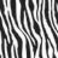 Logo_Zebra_Twitter_normal