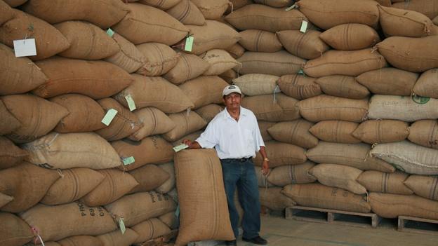 El café orgánico de Chiapas crece a 'contracorriente' y sin incentivos