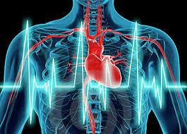 ¿Cuáles son los avances más prometedores de la cardiología?