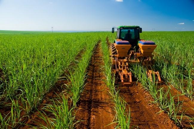¿Qué hace la agroindustria?
