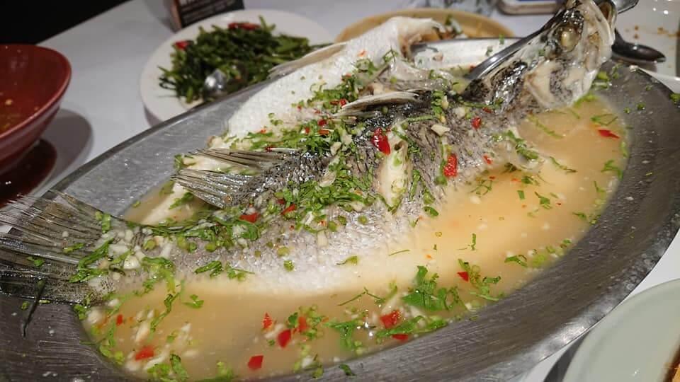 瓦城泰國料理-檸檬清蒸魚