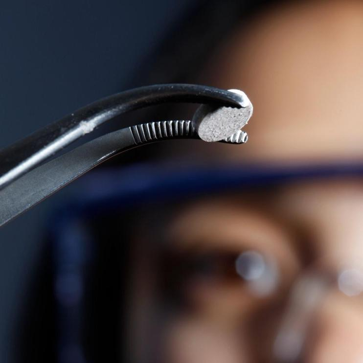 Photo of a researcher looking at a silver disc held by a curved hemostat