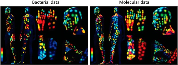 3D molecular topographical skin maps