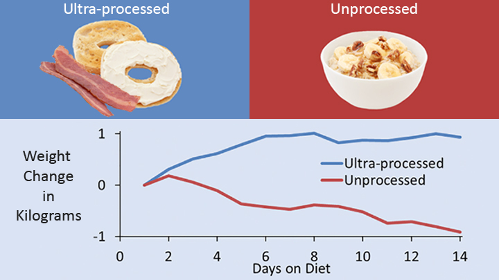 Dietary Weight Gain and Loss
