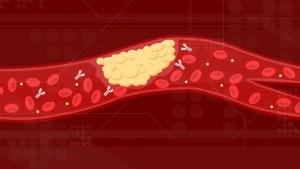 Antibodies circulating through the blood