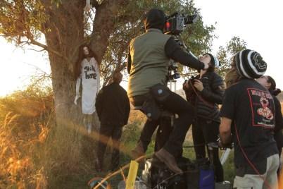 ritual_bts_dolly_tree