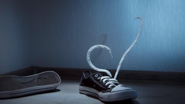 laces-mov