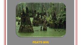 OP3 - Peat's Bog