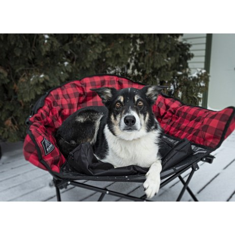 lazy dog bed chair