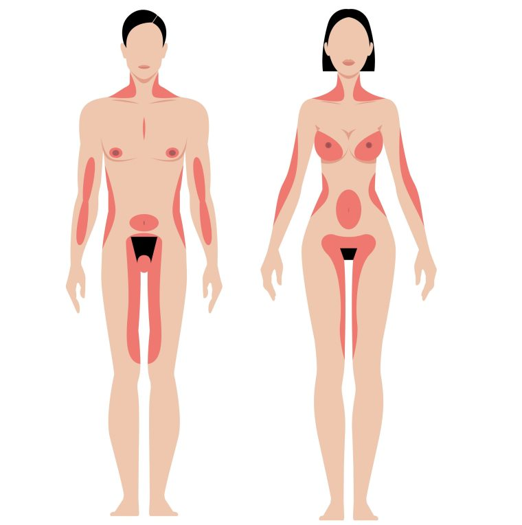 male and female erogenous zones