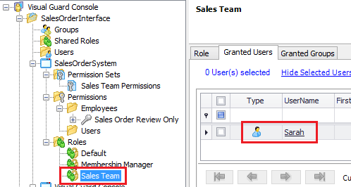 Sales Team Role Users