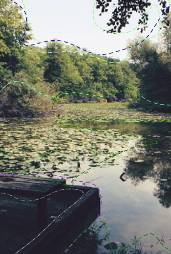 Landscape attributes / MaryCarol Hunter