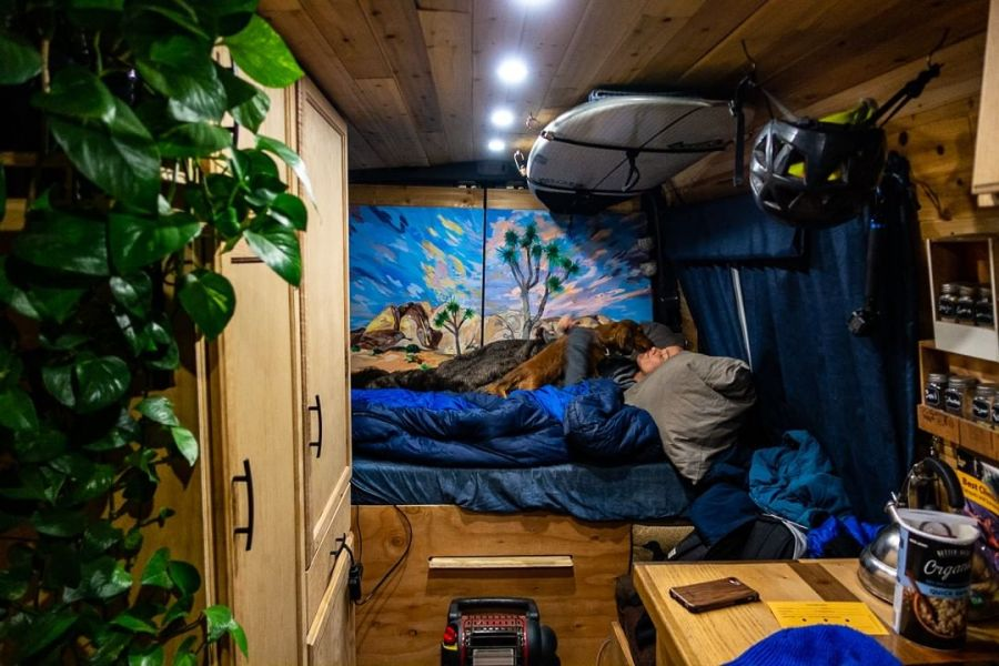 A girl laying in a bed in a sprinter van with a cute dog