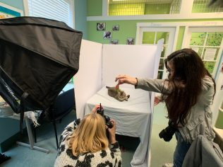 Marika and Holly work together to capture the perfect portraits of Ramona from Meow Cat Rescue.