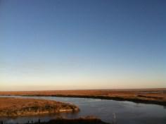 Salt marshes near Winnie, TX