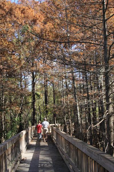 Anahuac Swamp Walk