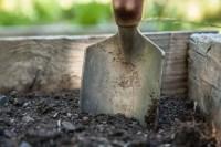 Soil Starter