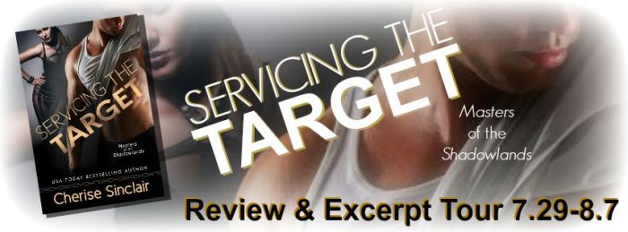 STT Review & Excerpt Tour Banner