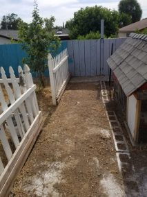 Dog Waste Removal in San Luis Obispo, Ca