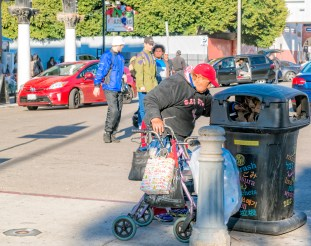 lady looking for recyclables in Venice Ca