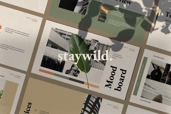 STAYWILD //  PRESENTATION